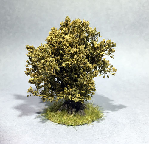 Hudson & Allen Bush with grassy Base