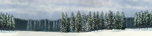 Winter Scene Backdrop No.2 Background