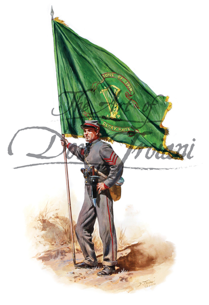10th Tennesee Color Bearer - Irish Legion C.S.A.
