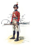 More about the 'Royal Marine Sergeant, 1805' product