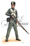 Troiani TPW33–U.S. Marine 1812 - War of 1812