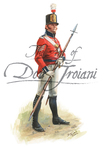 More about the 'British Sergeant, 10th Royal Veteran Battalion, 1812' product