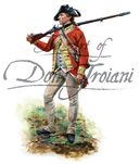 Private- Webb's Additional Continental Regiment 1777-1778
